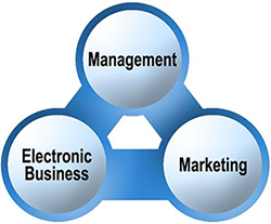 Marketing und Electronic Business - Schwerpunkte
